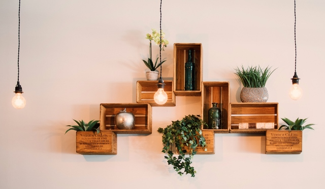 Supreme Accents Decorate for Healthy Living – Interior Decorating with House Plants - Arrange in Odd Numbers