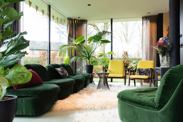Supreme Accents Decorate for Healthy Living – Interior Decorating with House Plants-Living Room
